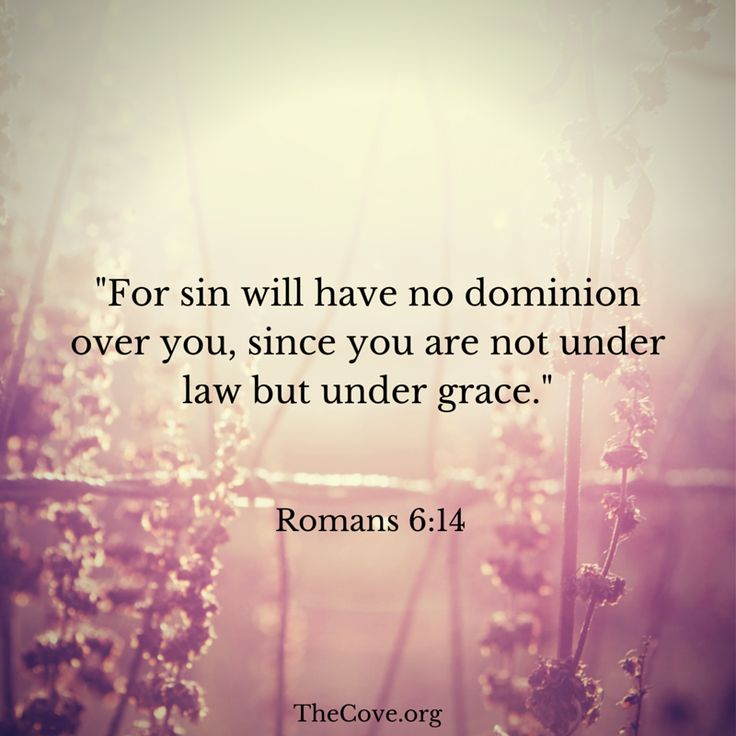 """For sin will have no dominion over you, since you are not under law but under grace."" Romans 6:14 #Scripture"