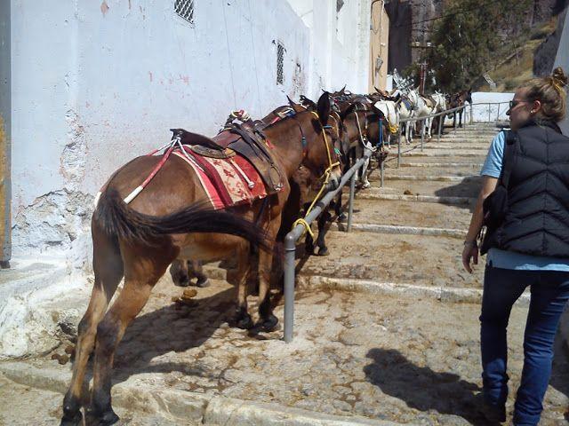 Δημιουργία - Επικοινωνία: Ταξίδια στην Ελλάδα:η άλλη άποψη-Η ειδυλλιακή φρίκ...