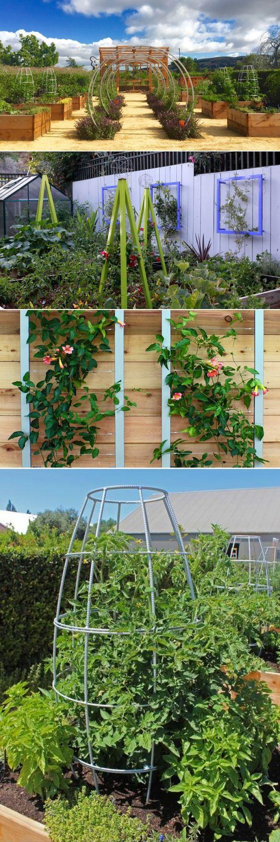 216 best Modern Trellis images on Pinterest | Garden trellis ...