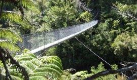 Pont suspendu sur l'île du sud