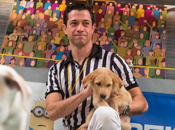 Secrets of the Puppy Bowl! Why the Dogs (and Kittens and Hedgehogs) Are So Well Behaved