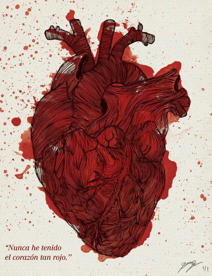 Anatomical Heart Art More