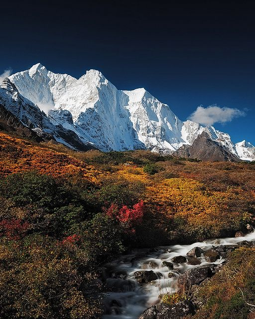 Autumn in Karta Valley, Himalayas, Tibet (by Available Light Images). | Isn't it amazing how it just goes from grass and flowers to ice and snow?