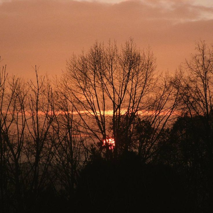Red sunset  #redsunset #sunset #sun #autumn #autumn #fall  #fall #czech #czechnature  #czechnature #trees #trees #nature #photo #photos #photography #photoshoot  #photoshooting #photoofnature