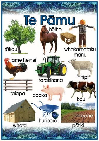 Māori Poster: The Farm