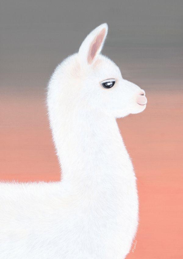 Uyuni Llama Kyenam In 2019 Llama Drawing Llama Arts