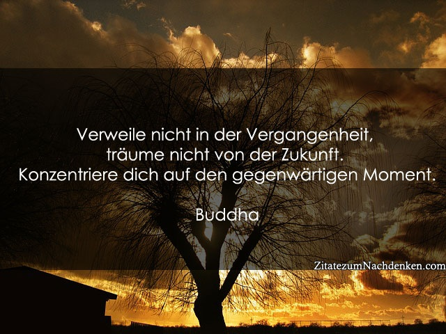 Buddhistische Weisheit Zitate Zitate Spruche Pinterest Quotes