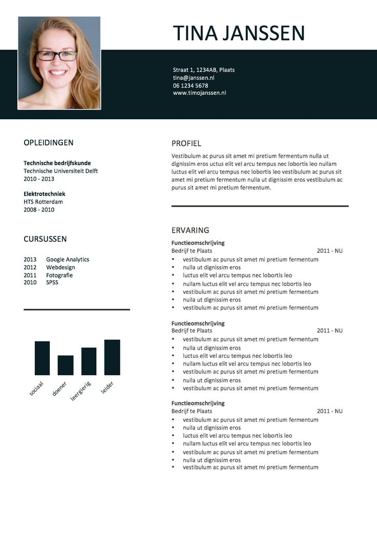 Cv Sjabloon Ms Word Word Cv