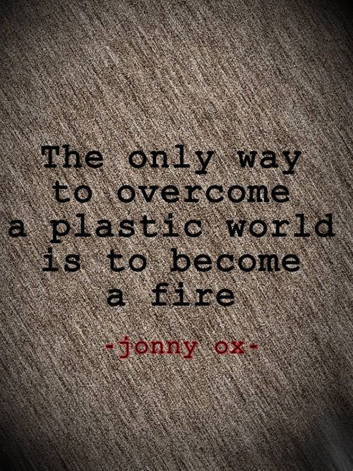 Great Advice #253: The only way to overcome a plastic world is to become a fire. - Jonny Ox