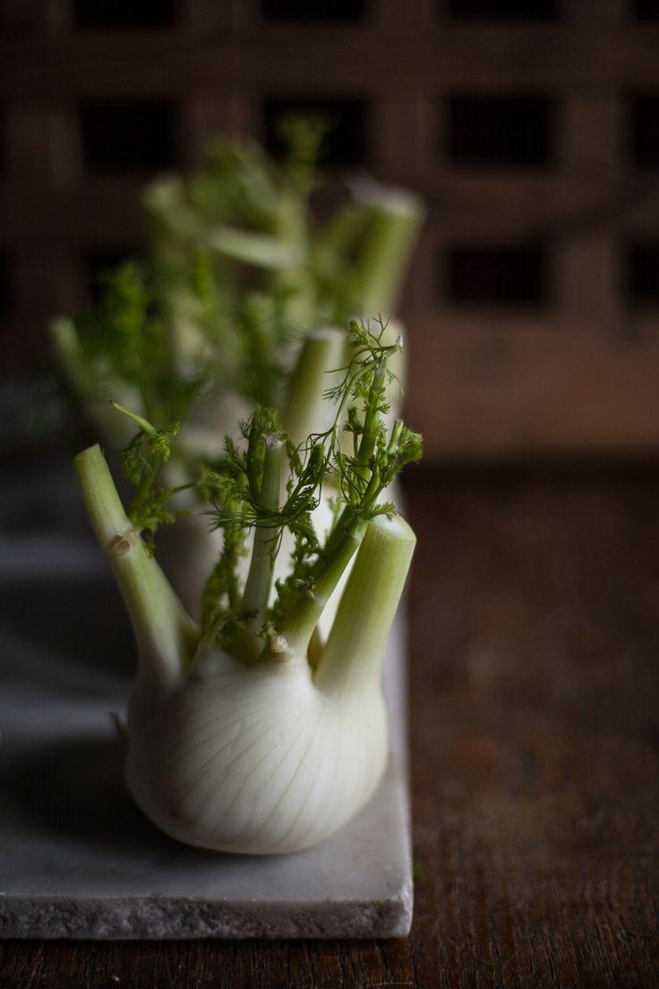 Fennnel is fructosefriendly // Find fructosefree recipes on http://fifthfloor.kitchen