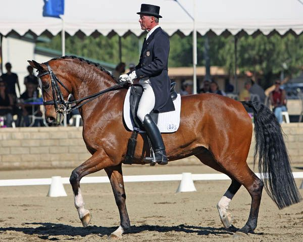 Ann Romney's Horse To Compete In Olympic Qualifying Event This Weekend . . . just thought you'd like to know.