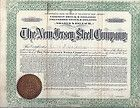 1909 NEW JERSEY STEEL COMPANY STOCK CERTIFICATE IRON MINES MOUNT HOPE AREA - http://coins.goshoppins.com/stocks-bonds-scripophily/1909-new-jersey-steel-company-stock-certificate-iron-mines-mount-hope-area/