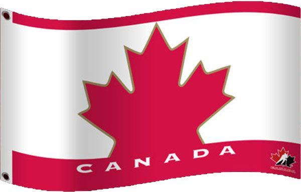 Go Canada Go - Team Canada Flags