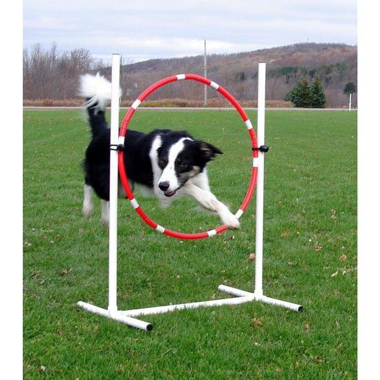 Dog Agility Tire Jump