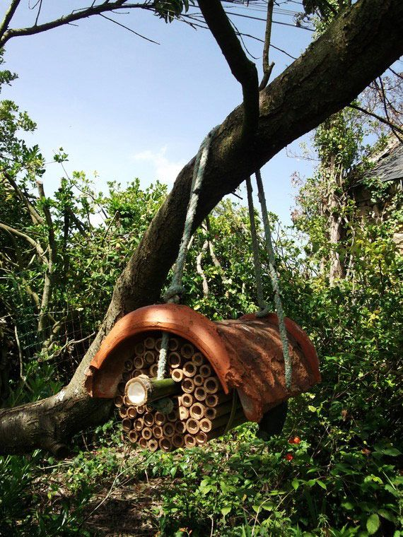 Les 103 meilleures images propos de hotels insectes sur pinterest jardins maison d 39 hiver et - Hotel a insectes nature et decouverte ...