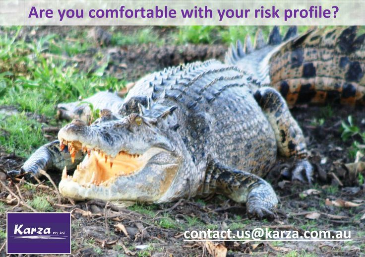 Are you comfortable with your risk profile?