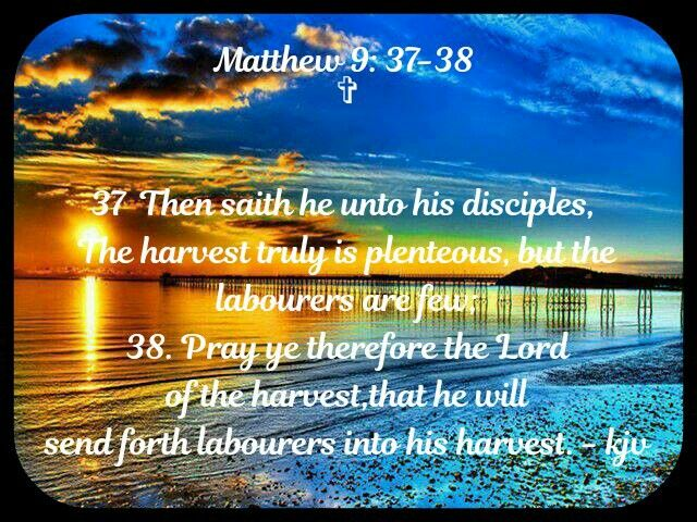 Matthew 9:37-38 KJV | Quick view bible, Jigsaw games, Bible truth