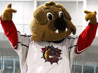 Hamilton Bulldogs mascot Bruiser.