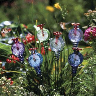 Picture of Par-A-Sol Lollipop Stake Hummingbird Feeder    What a cute way to feed hummingbirds!