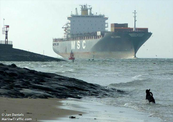 Ship Vlissingen