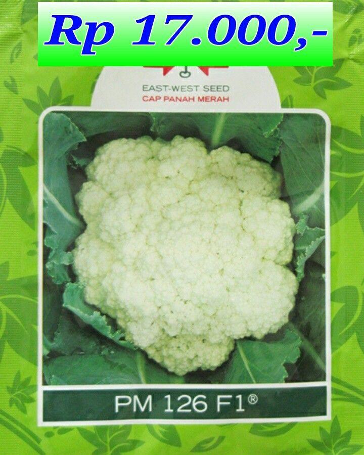Benih Bunga Kol PM 126 PM 17.000 IDR Line i-rimayana