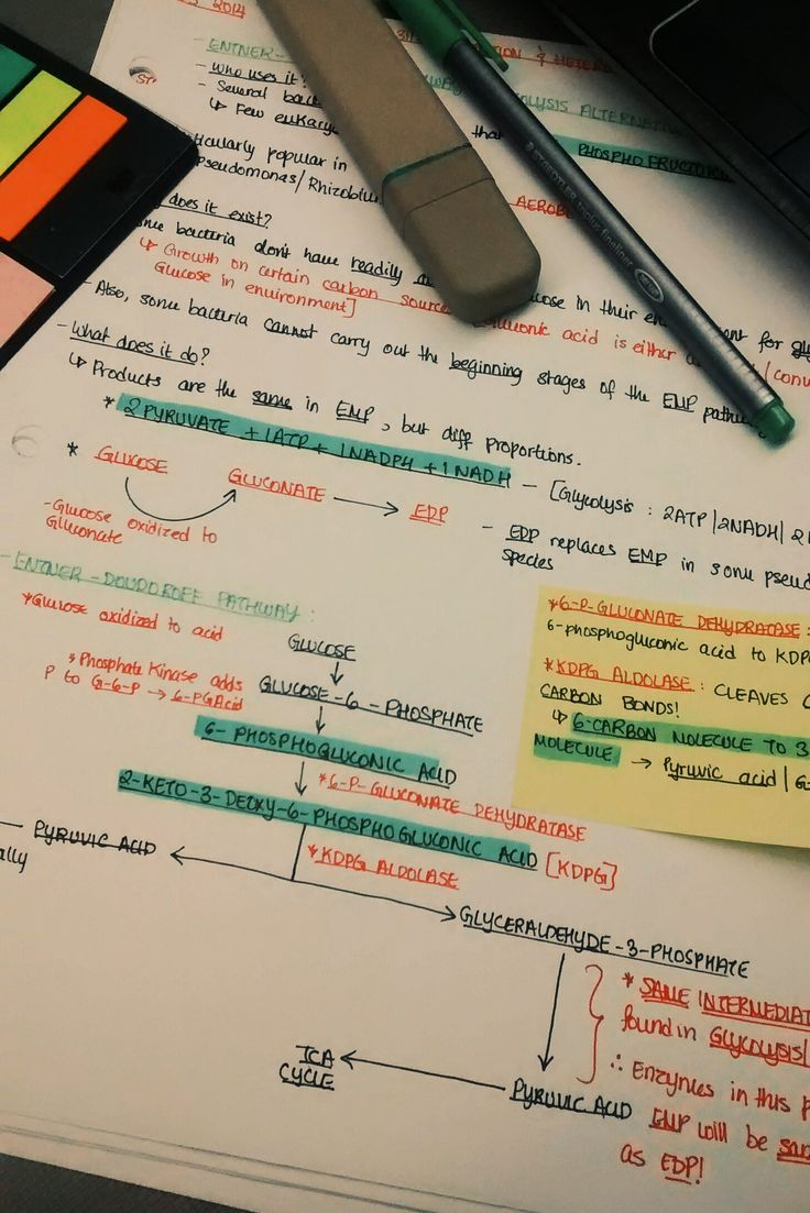 Notas; Exemplo; Highlighter; Post-it;