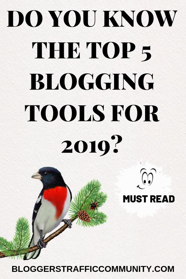Here are the Top 5 Bloggers Tools 2019. These are the must have tools that all bloggers and website owners should be usi…