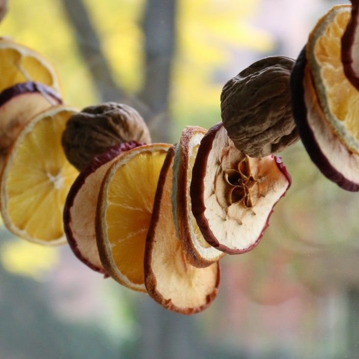 dried fruit garland for the holidays | gardenista