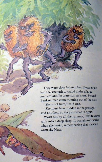 Snugglepot and Cuddlepie adventures - Banksia Men