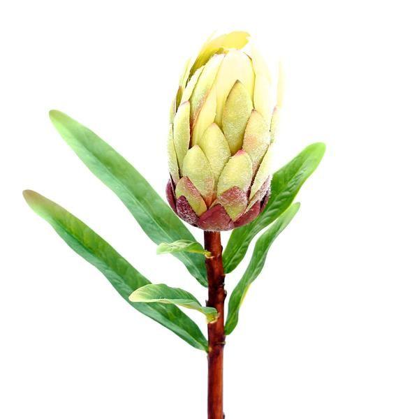 Luxury Artificial Fake Silk Flowers Green Purple Protea Lifelike Realistic Faux Flowers Buy Online From Amar Artificial Foliage Faux Flowers Artificial Flowers