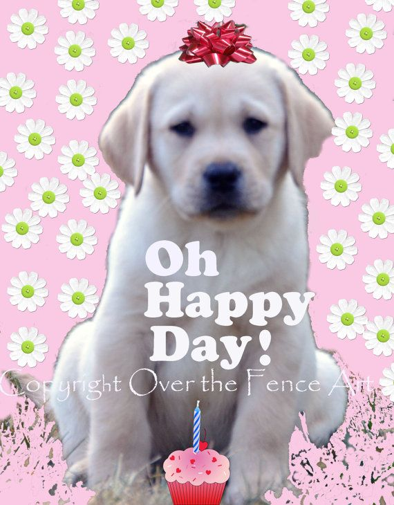 Birthday Greeting Card Labrador Card by overthefenceart on Etsy, $5.00