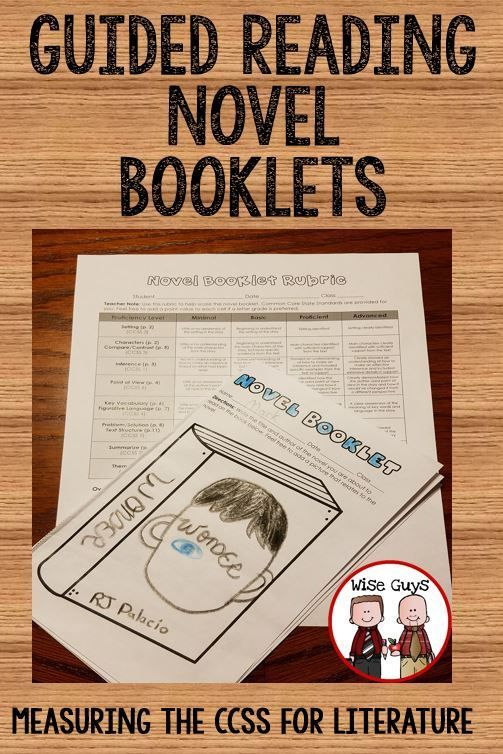 Standards Based Guided Reading Novel Booklets - Wise Guys