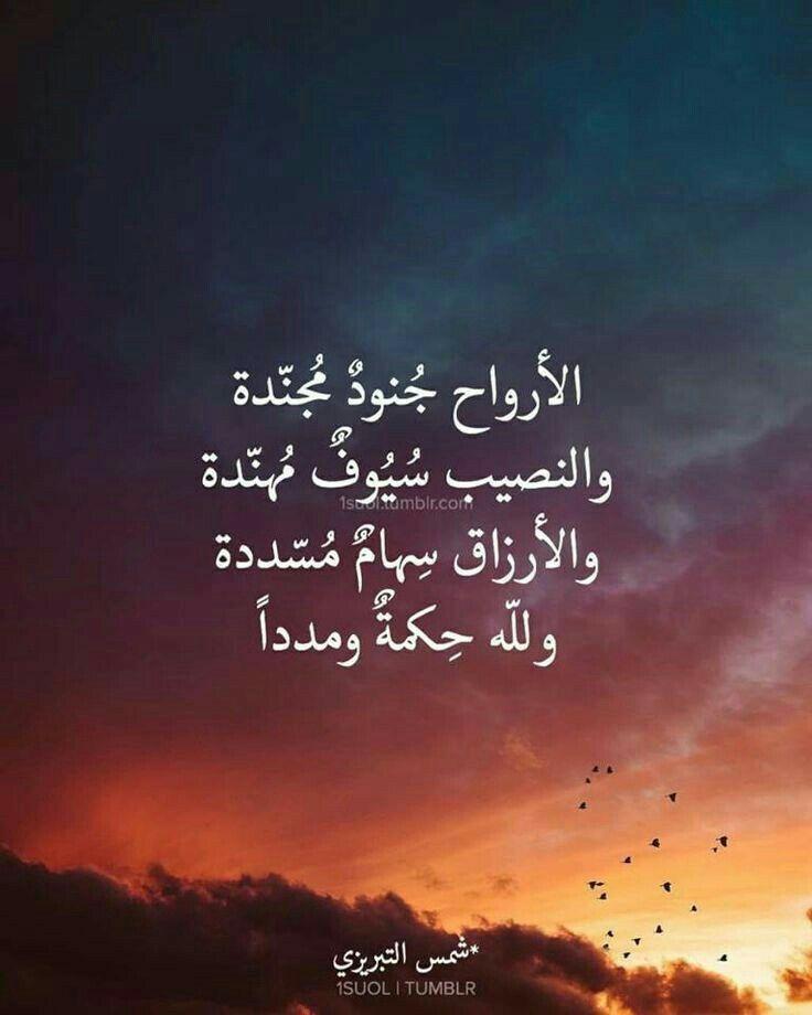 يارب المدد من عندك في كل امر فيه خير لنا امين يارب العالمين Talking Quotes Beautiful Arabic Words Wisdom Quotes