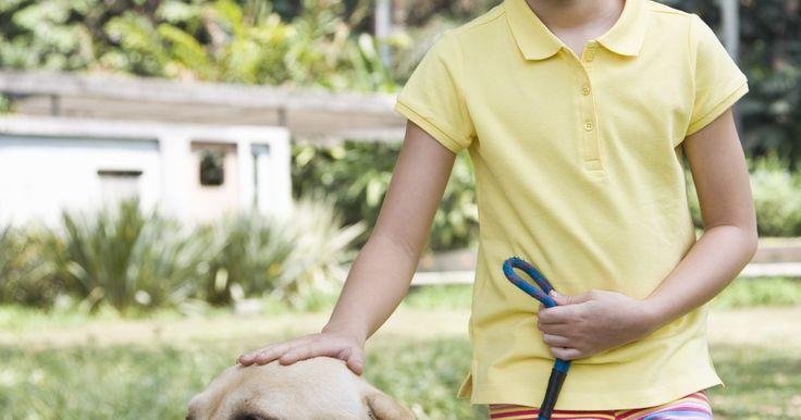 Como remover odor de urina em grama sintética. A grama sintética pode adicionar um elemento verde na decoração da sua casa e nunca vai morrer ou exigir qualquer cuidado. No entanto, seu cão pode ficar confuso e decidir urinar nos locais com essa grama. Pode-se remover esse cheiro com produtos que possivelmente se encontrem em casa. Se você tem grama sintética em seu gramado, é ainda mais ...