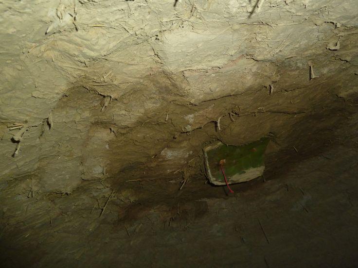 interior horno
