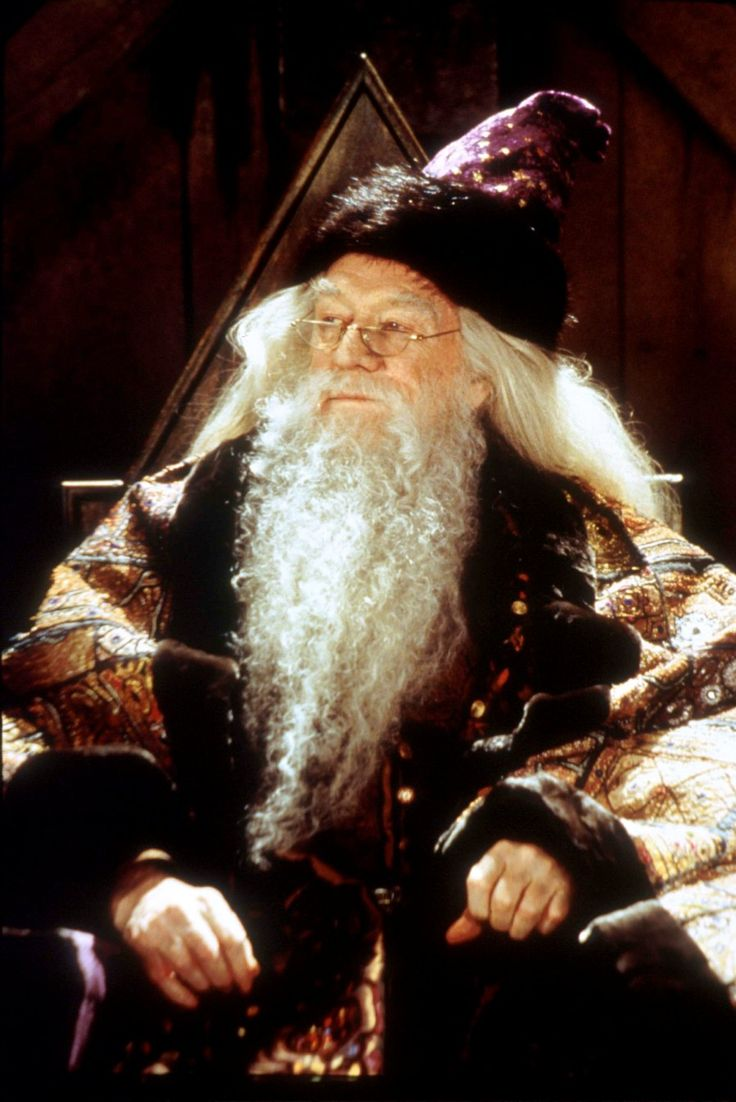 17 best ideas about dumbledore costume on pinterest for Buy dumbledore s wand