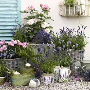 Garten im Provence-Stil mit Bastkörben und Lavendel. Für etwas anderes …   – Garten Ideen