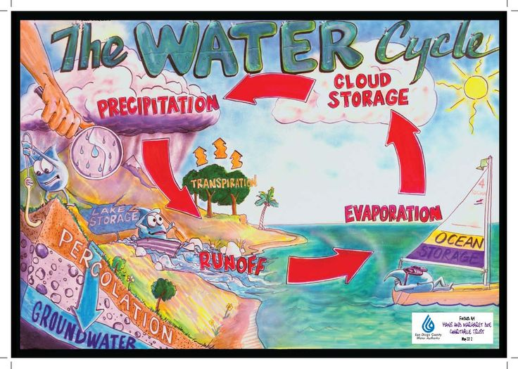 353 best Water Cycle ♥ Projects & Ideas for Kids images on ...