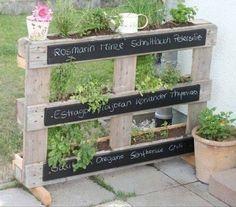 Des plants d'herbes aromatiques sur une terrasse. Nul besoin d'avoir un jardin…