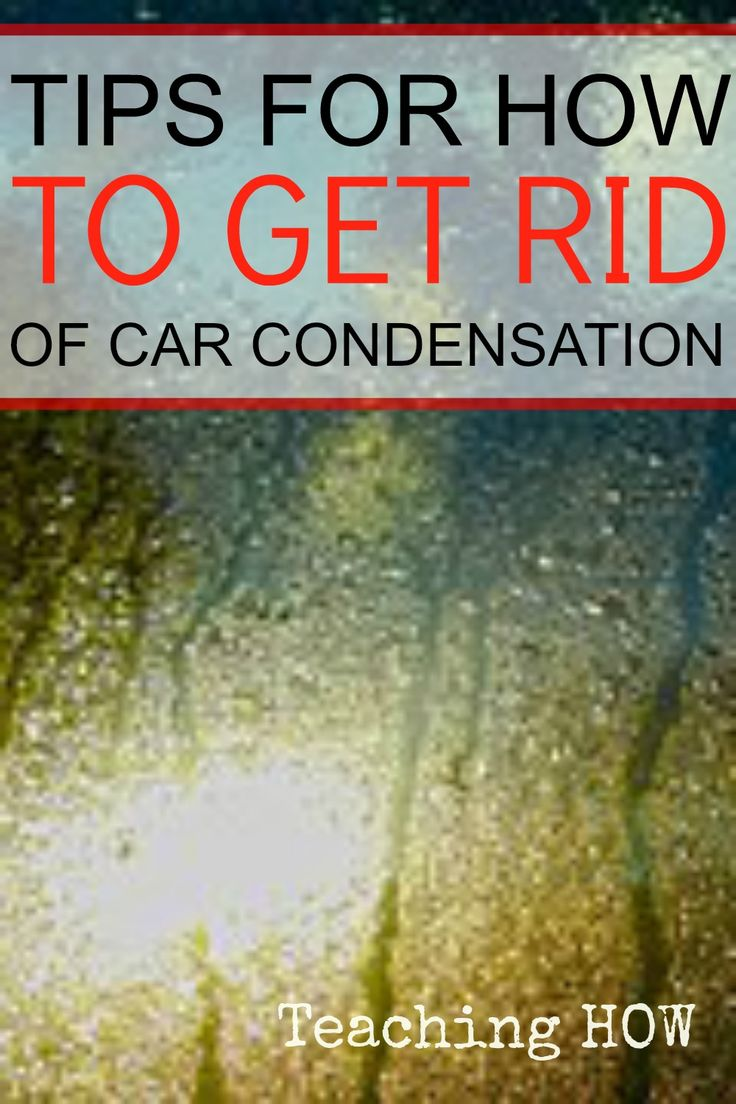 Tips for how to get rid of car condensation... Because for how to tips - Click on the following link!  http://www.teachinghow.com/how-to-get-rid-of-car-condensation/
