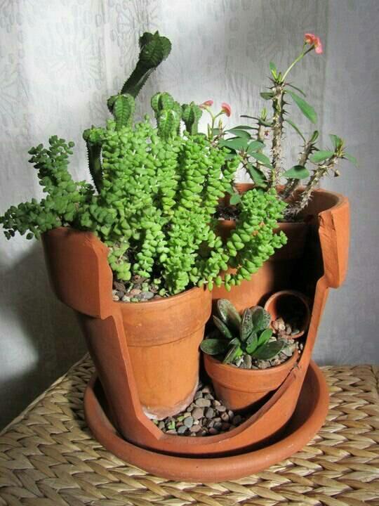 Fill a large broken pot with smaller pots & pebbles