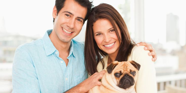 Charitable Deductions for Animal-Rescue Volunteers
