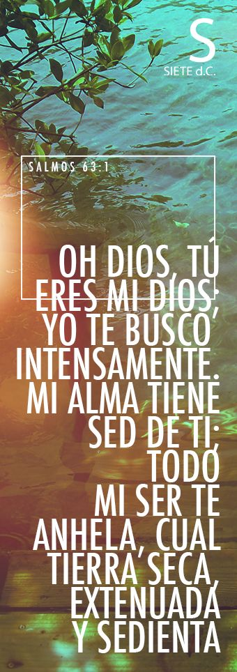 Salmos 63:1 Dios, Dios mío eres tú; De madrugada te buscaré; Mi alma tiene sed de ti, mi carne te anhela, En tierra seca y árida donde no hay aguas. ♔ Psalms63:1 A psalm of David, regarding a time when David was in the wilderness of Judah. O God, you are my God; I earnestly search for you. My soul thirsts for you; my whole body longs for you in this parched and weary land where there is no water.