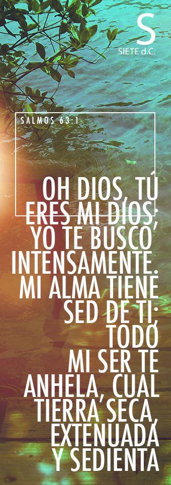 Salmos 63:1 Dios, Dios mío eres tú; De madrugada te buscaré; Mi alma tiene sed…
