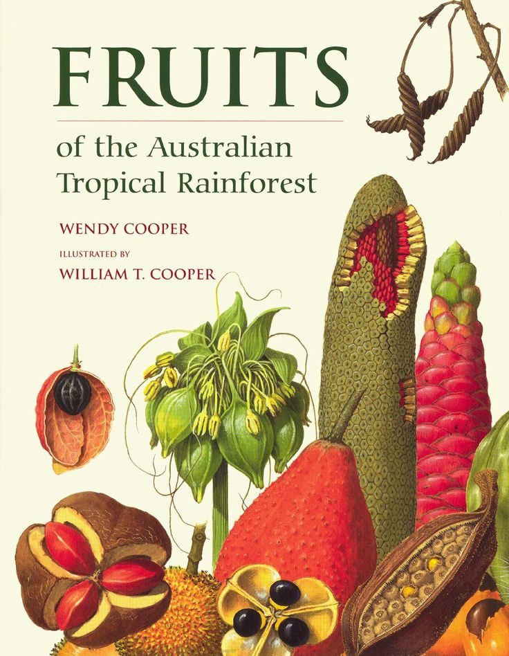 ISSUU - Fruits of the Australian tropical rainforest by William Cooper