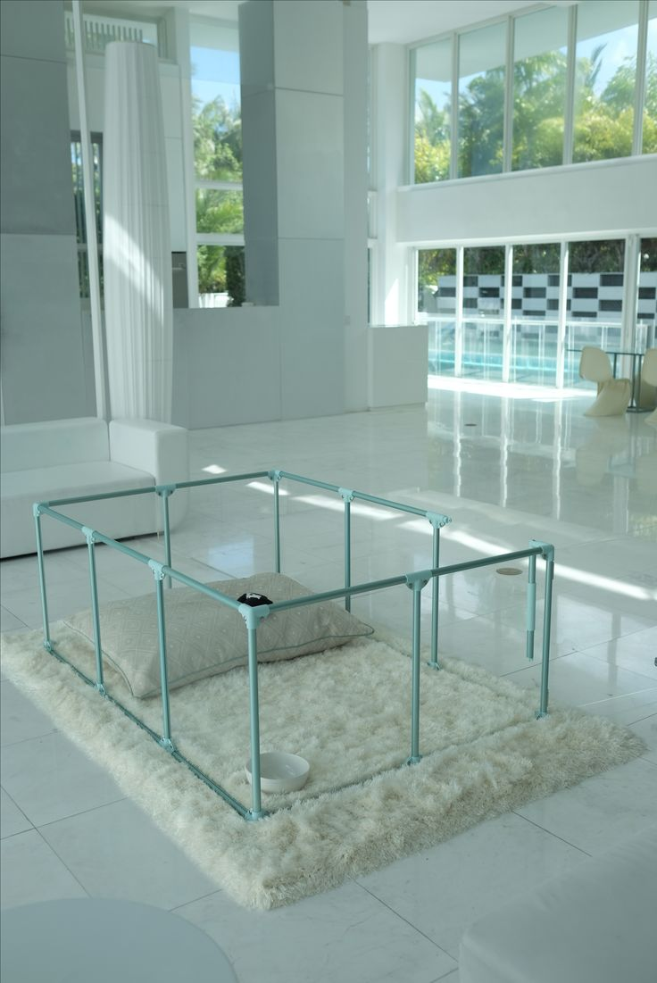 Large Modern Dog Pen In A Large Modern Glass House Dog Pen Puppy Room Dog House Plans