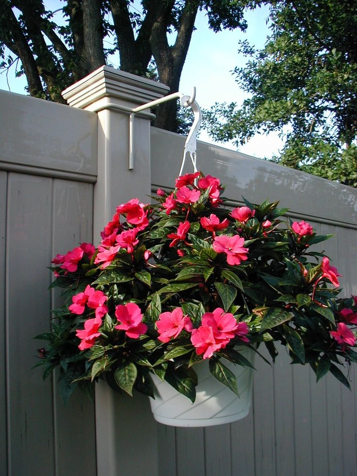Vinyl Fence Plant Amp Accessory Post Hanger White 6 5