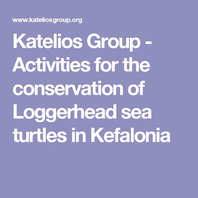 Katelios Group - Activities for the conservation of Loggerhead sea turtles in Kefalonia