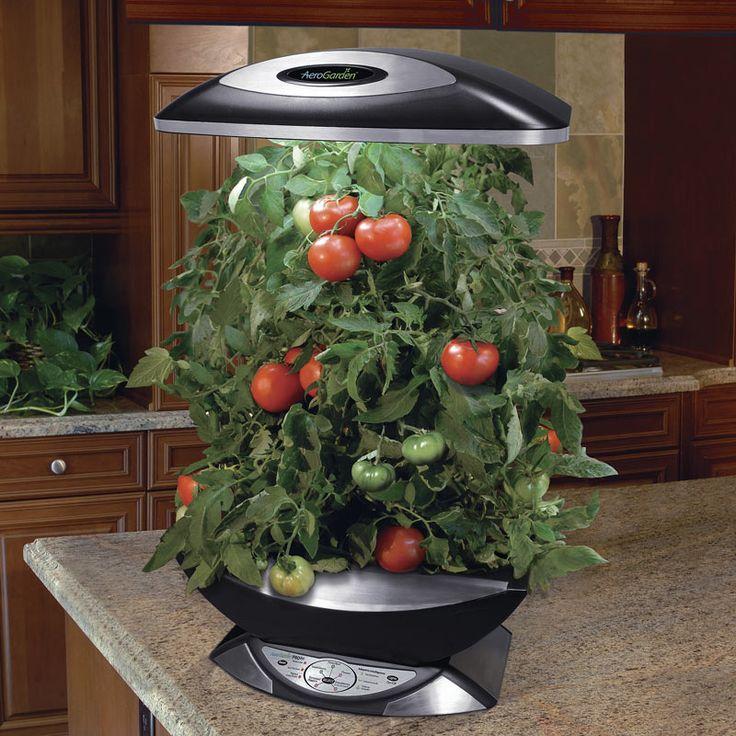 Aerogarden Pro 200 Indoor Garden Hydroponic Gardening 640 x 480