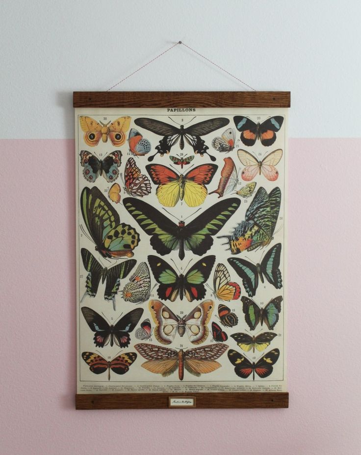 DIY Vintage Poster Frame for Greta's Butterflies | Chris Loves Julia